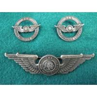 US: WWII Civil Air Patrol pilot's wing and lapel devices