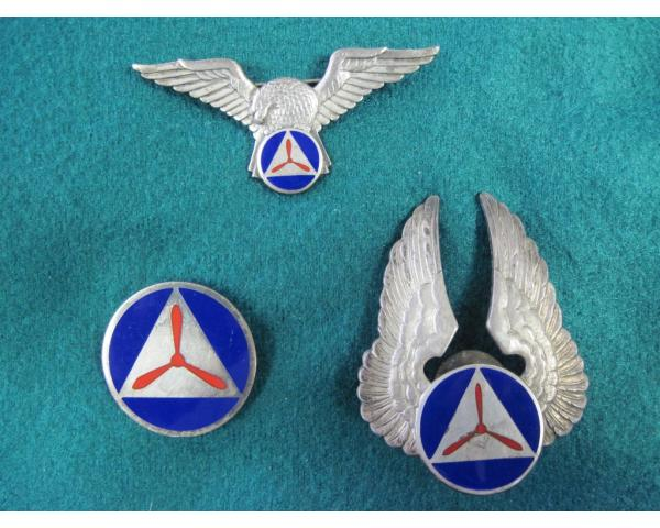 US: WWII Period Civil Air Patrol Aviation wings